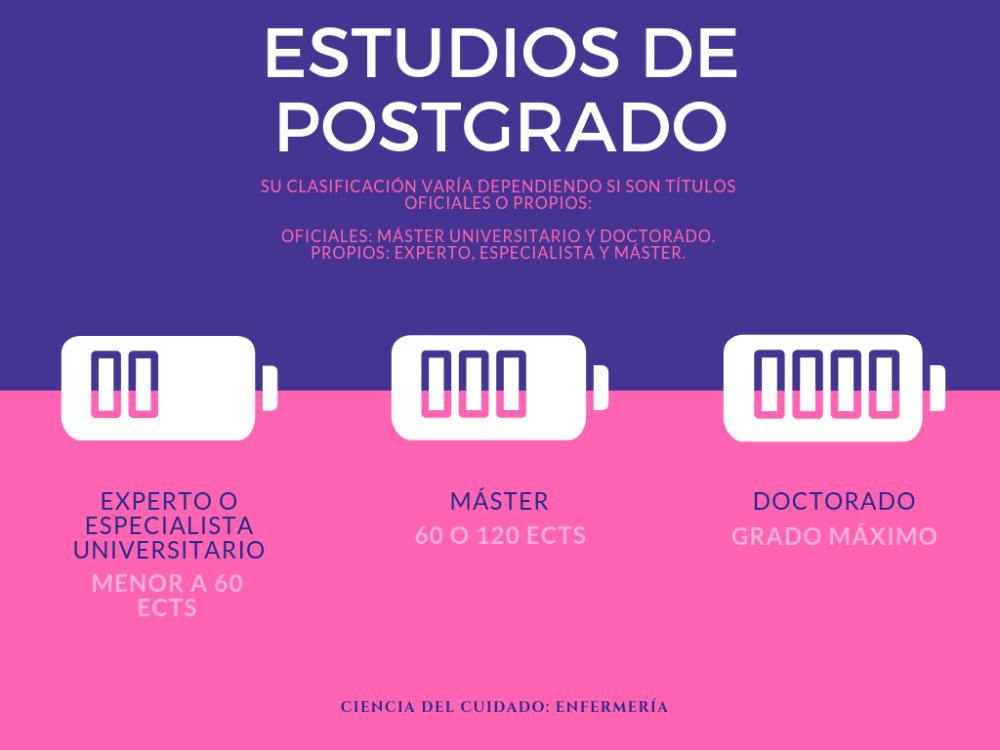 ESTUDIOS DE POSTGRADO (1)